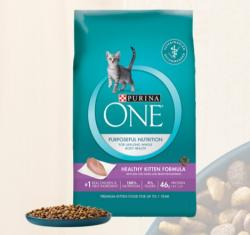 FREE bag Purina ONE coupon for Cat