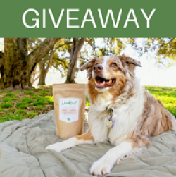 Love Your Pet Giveaway prize ilustration