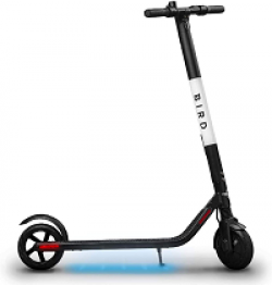 Hapari Bird Scooter Sweepstakes prize ilustration