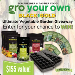 Vegetable & Herb Garden Giveaway prize ilustration